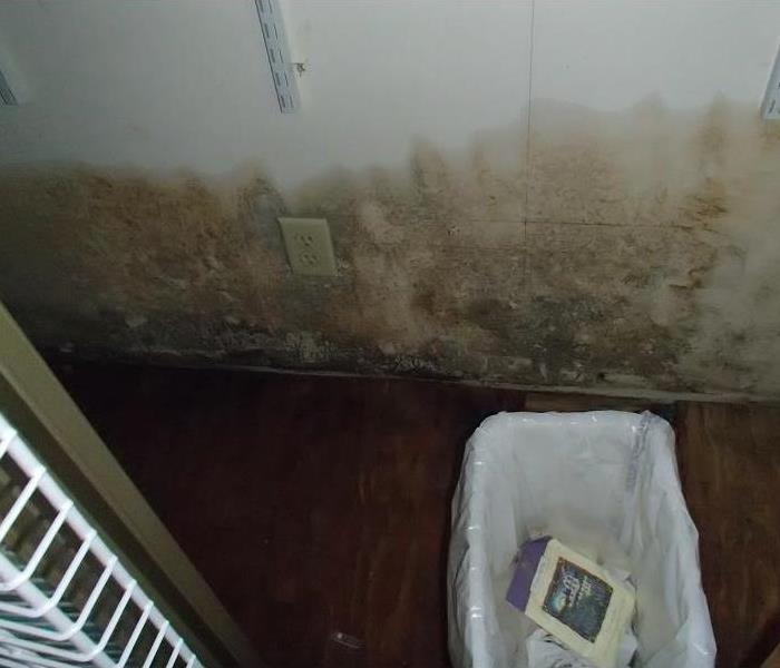 Mold Remediation in Henderson County Home Before