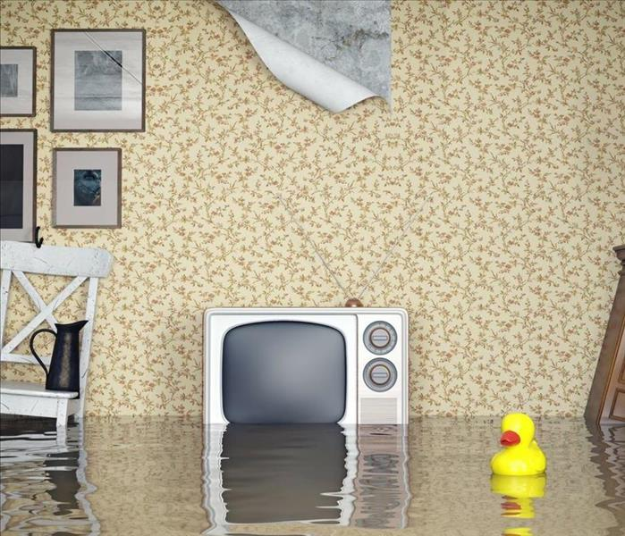 Water Damage Don't Wait To Call SERVPRO Of Henderson County After A Water Damage!