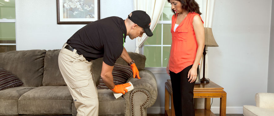 Hendersonville, NC carpet upholstery cleaning